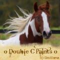 o double c paints o